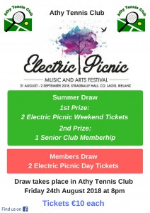 Electric Picnic 2018 Poster for FB