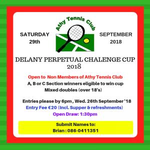 Delaney Cup poster 208